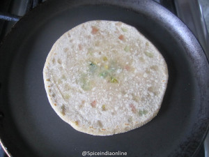 Mixed Vegetable Paratha