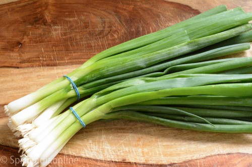 How to freeze spring onions 1