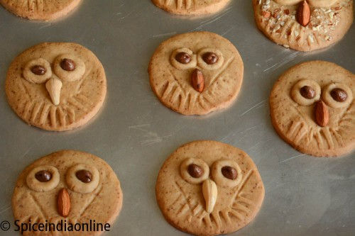 Owl Shortbread Cookies5