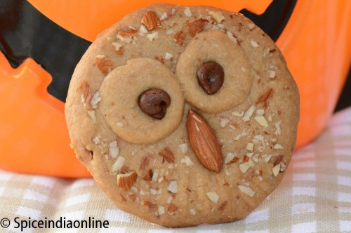 Owl Shortbread Cookies9