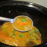 slow cooker sambar 11